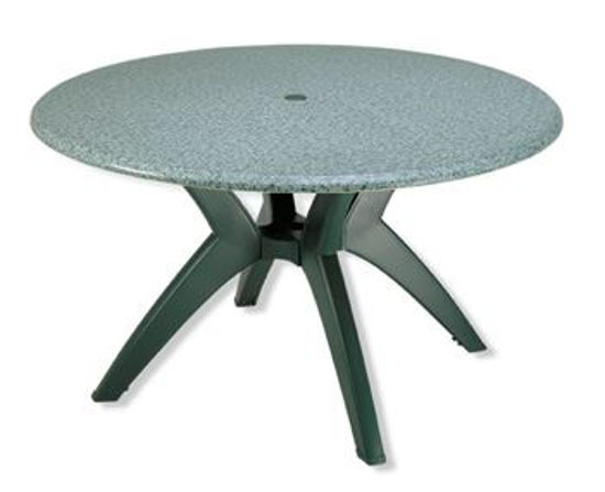 """Picture of 48"""" ROUND Table Top"""